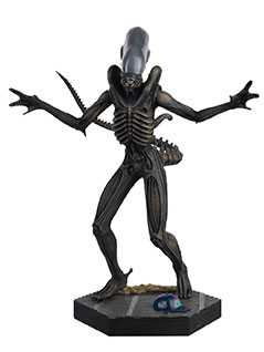 xenomorph (alien) - Alien and Predator