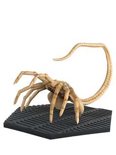 facehugger - Alien and Predator